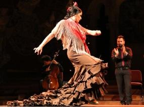 flamencopalau